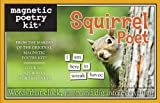 Squirrel Poet: Magnetic Poetry Kit