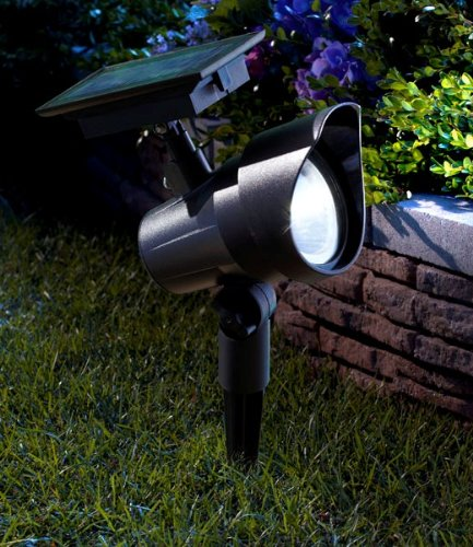 moonrays 93380 premium output solar powered led spotlight. Black Bedroom Furniture Sets. Home Design Ideas