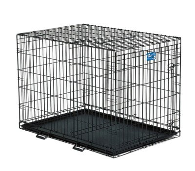 Buy Midwest Life Stages Single Door Folding Metal Dog Crate 42