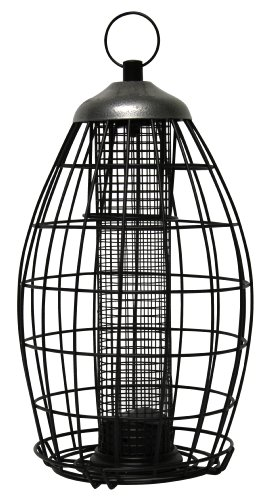 Heath Outdoor 21216 Brass Squirrel Proof Nut and Seed Bird Feeder, Metal Pewter-Black
