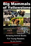 Big Mammals Of Yellowstone For Kids: Amazing Animal Books for Young Readers (Volume 6)