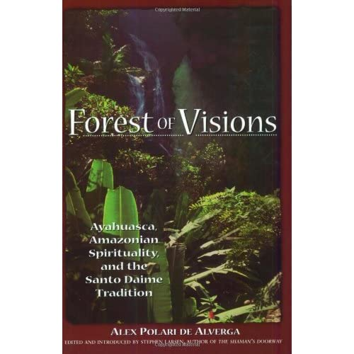 Forest of Visions: Ayahuasca, Amazonian Spirituality, and the Santo