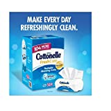 Cottonelle-Fresh-Care-Flushable-Cleansing-Cloths-504-Cloths
