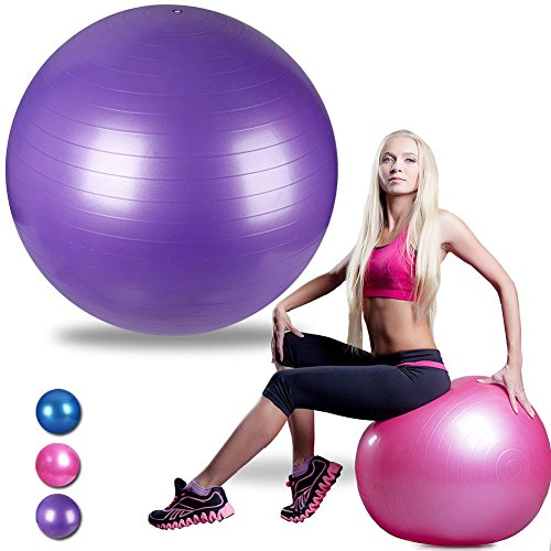 Ranbow Exercise Stability Ball, Anti Burst & Slip Yoga Balls, Perfect for Body Balance, Fitness Professional Grade Workout Equipment with Pump & Exercise Guide, 65cm L x 65cm W, 2200 lb, Purple