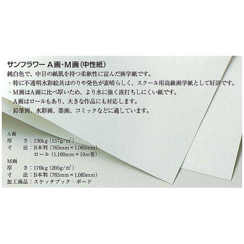 サンフラワーM画用紙 100枚包 八切(271×382mm)
