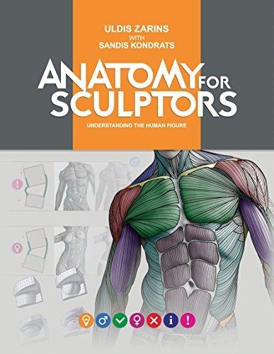 Anatomy for Sculptors, Understanding the Human Figure by Uldis Zarins with Sandis Kondrats (2014-08-02)