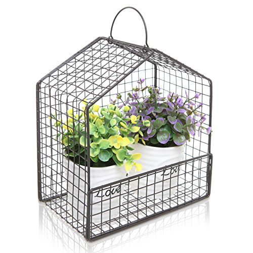 Black Metal Mesh Wire House Design Hanging or Freestanding Succulent Plant Holder / Display Shelf Basket (Wire Wall Planter compare prices)