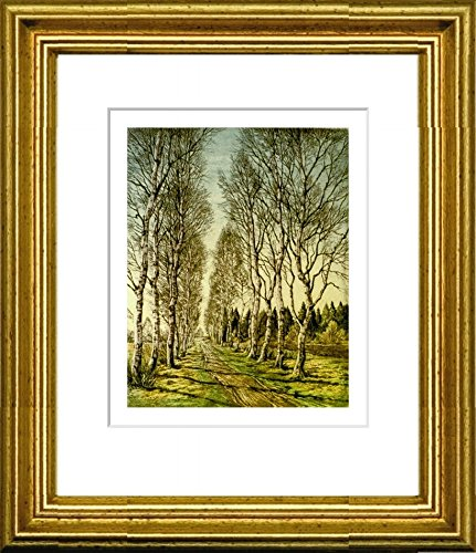 Hand-colored hand-crafted etching Birkenallee (Germany) by Gerhards in a gold frame behind a passe-partout, graphics, art design, art print