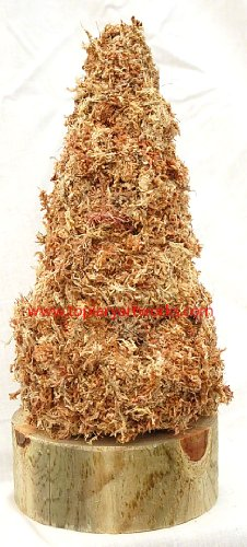 Prelit Art Christmas Trees - Christmas Tree Cone Sphagnum Moss Topiary Form