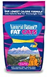 Dick Van Patten's Natural Balance Fat Cats Low Calorie Dry Cat Formula, 6-Pound