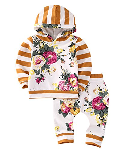 Baby Girls Boys Long Sleeve Hooded Tops + Leggings Trousers Outfits Set Clothes (0-3M, Floral)