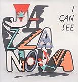 echange, troc Jazzanova - I Can See