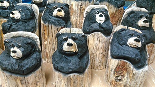Chainsaw Carved Bear - wooden bear carving (Wood Carving Bear compare prices)