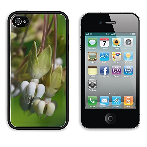 MSD Premium Apple iPhone 4 iPhone 4S Aluminum Backplate Bumper Snap Case Clasping MIlkweed Asclepias amplexicaulis Image 19733015086 (4s Screen Repair Kit Pink compare prices)