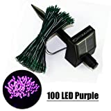 ZITRADES® Waterproof 55FT 100LED 3 Modes Purple Solar Fairy String Lights for outdoor - gardens - homes - Christmas party