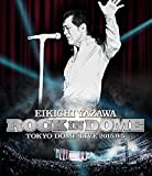 ROCK IN DOME [DVD]