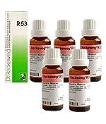 Dr.RECKEWEG R53