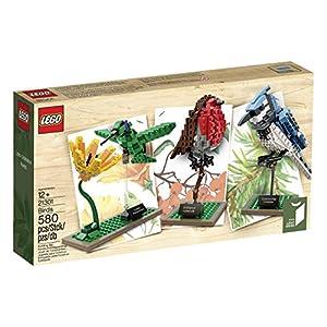 LEGO Ideas 21301 Birds Model Kit from LEGO Ideas