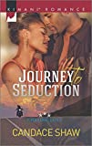 Journey to Seduction (Chasing Love)