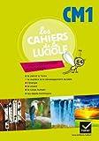 Les Cahiers de la Luciole Sciences expérimentales et technologie CM1 éd. 2012 - Cahier de l'élève