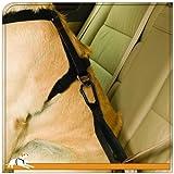 Pet Seat Belt The Green Head