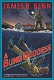 img - for A Blind Goddess (Billy Boyle World War II Mystery) book / textbook / text book