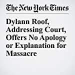 Dylann Roof, Addressing Court, Offers No Apology or Explanation for Massacre | Alan Blinder,Kevin Sack