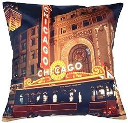 meSleep Digital Print Wonderful Chicago City Cushion Cover - Multicolor