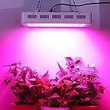 Roleadro Led Pflanzenlampe Dimmbare Vollspektrum 300w Led...