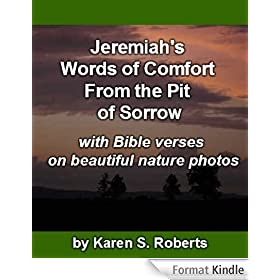 Jeremiah's Words of Comfort From the Pit of Sorrow (Bible Verse Pictures Book 1) (English Edition)