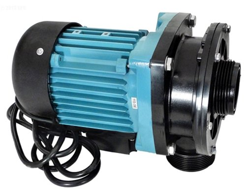hayward vlx4009 pump without strainer