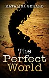 The Perfect World (The Perfect World Series Book 1)