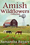 Read Amish Wildflowers (Amish Romance): 3 Book Collection on-line