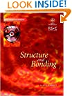 Structure and Bonding (Basic Concepts In Chemistry)