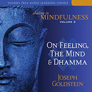 Abiding in Mindfulness, Volume 2: On Feeling, the Mind, and Dhamma | [Joseph Goldstein]