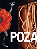 img - for POZA: On the Polishness of Polish Contemporary Art book / textbook / text book
