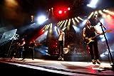 Image de Feuertanz Festival 2013 (Blu-ray)