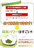 M日本茶・粉茶・粉末茶 粉末緑茶(100g)[訳あり]