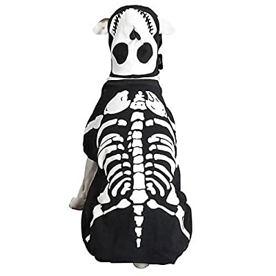 Casual Canine Glowing Skeleton Dog Costume