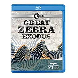 Nature: Great Zebra Exodus [Blu-ray]