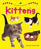 img - for Say and Point Picture Boards: Kittens book / textbook / text book