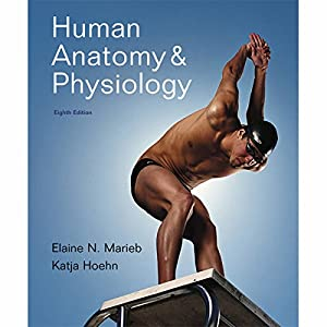 VangoNotes for Human Anatomy & Physiology, 8/e Audiobook