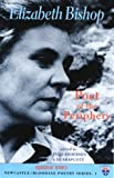 Elizabeth Bishop: Poet of the Periphery (Newcastle/Bloodaxe Poetry)