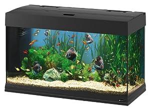 Ferplast Dubai 80 Aquarium, 81 x 36 x 51 cm, Black