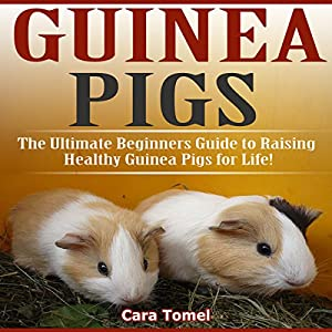 Guinea Pigs: The Ultimate Beginner's Guide to Raising Healthy Guinea Pigs for Life! Audiobook