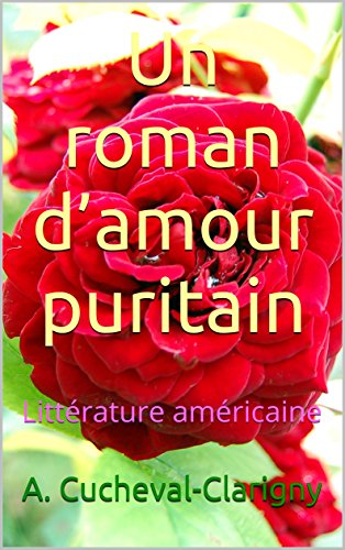 un-roman-damour-puritain-litterature-americaine-french-edition