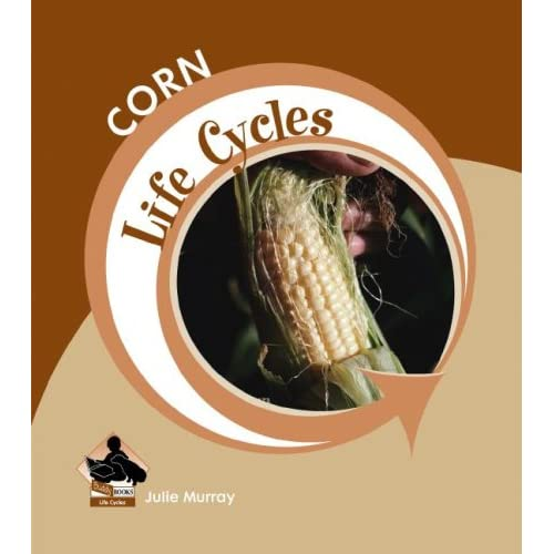 Corn (Life Cycles (QEB Publishing))