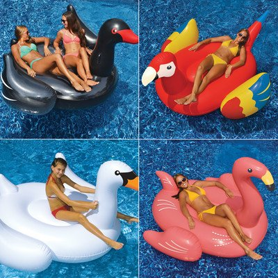 4 Piece Swimming Pool Lounger Set