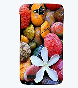 printtech Colorful Stone Back Case Cover for Huawei Honor Holly
