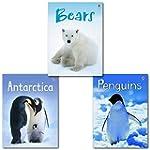 Usborne Beginners Antarctica Animals...
